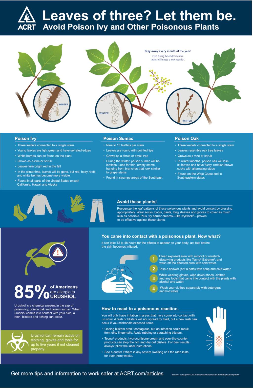 Poison Ivy Facts